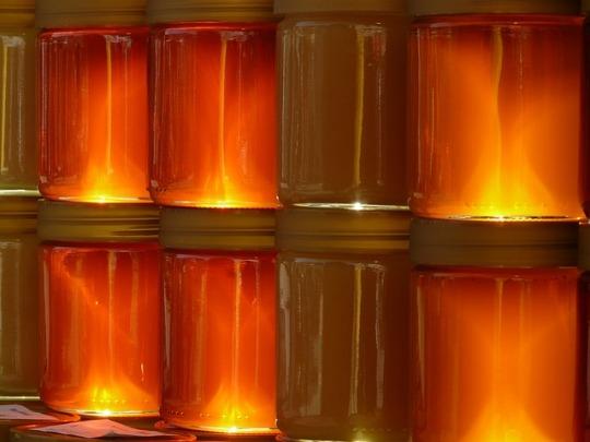 honey-5731_640