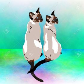 4906775-Two-Siamese-cats-sitting-together--Stock-Photo-cat