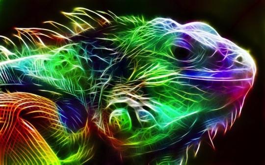 animaux-couleurs-Fractalius-9
