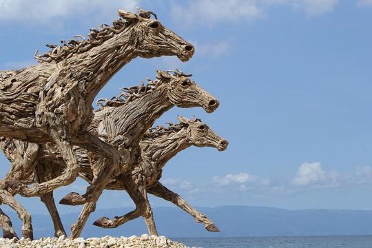 sculptures-de-chevaux-en-bois-flotte-par-james-doran-webb-2