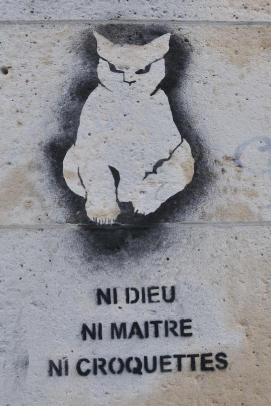 chat-ni-dieu-ni-maitre