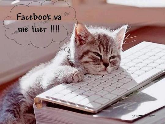 humour-chat-facebook-va-me-tuer_imagesia-com_283g