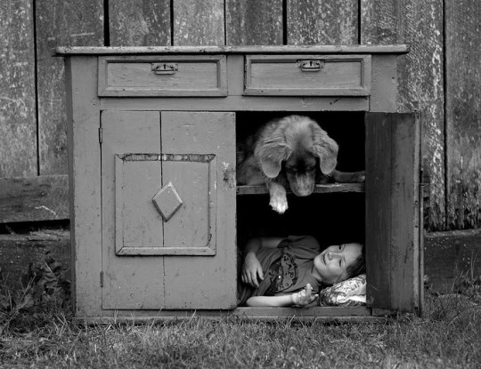 sebastian-enfant-chien