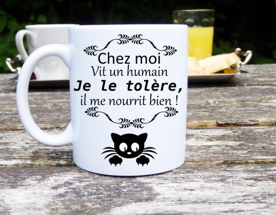 vaisselle-mug-chat-humour-mug-original-et-p-15885858-mug-chat1-png-57bff-ec8a2_big